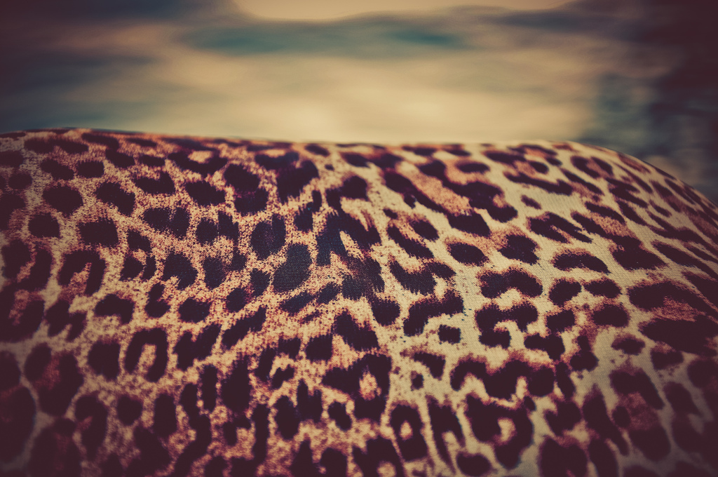 Interior Design Philosophy - Leopard Print Fabric